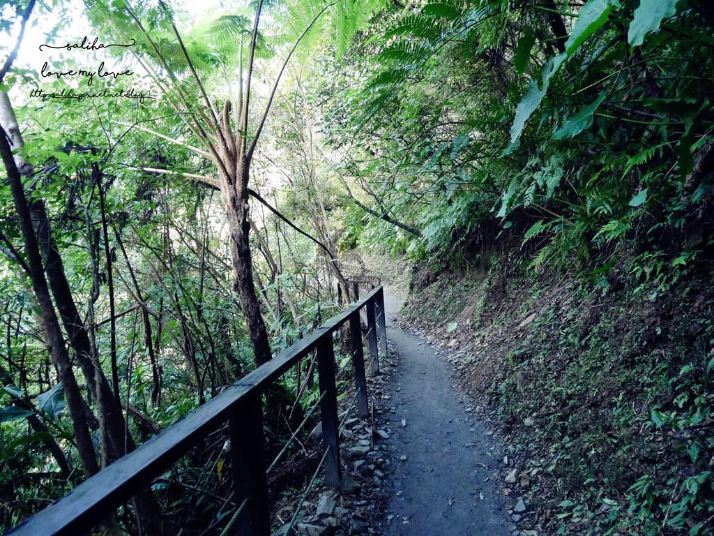 宜蘭礁溪一日遊兩天一夜景點行程推薦林美石磐步道 (2)