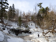 Chester Creek walk (3)