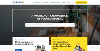 Studyhippo.com Review