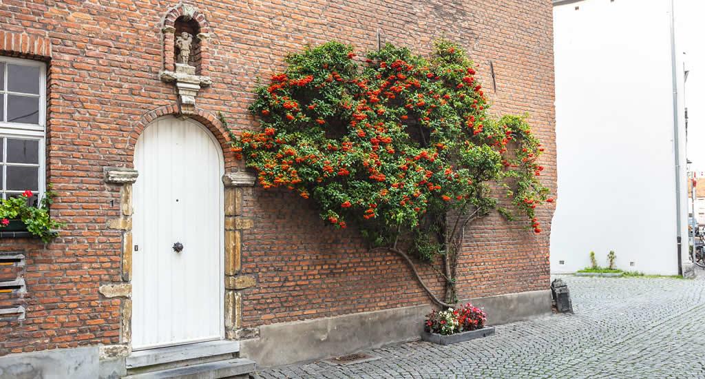 Bezienswaardigheden Mechelen: Begijnhof | Mooistestedentrips.nl