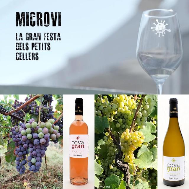 Ahir es va encetar el #microvi2019 amb vins naturals molt interessants de #Georgia  @cuscoberga també elabora #vins #naturals peculiars que podeu tastar al #celler o a la fira dels petits #cellers #covagran #origendelavinya #descobrir la nostra #terra #bc