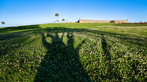 grass shadow usa needswork ©edrosack florida clear palm tree other landscape buildingandarchitecture military sky clover wall antiquesandcollectibles staugustine fort armedforces