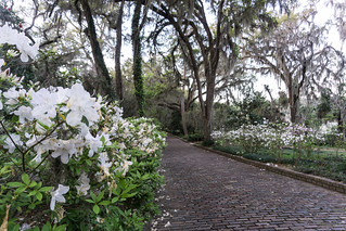 Alfred B. Maclay Gardens State Park, Tallahassee, Fla., March 2019 | by JenniferHuber