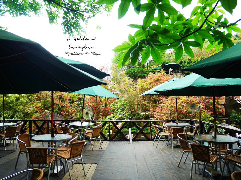 陽明山一日遊ig打卡景點推薦台北奧萬大楓葉季景觀餐廳親子戲水 (1)