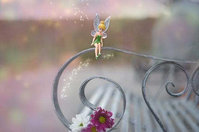 Fairy Bench...