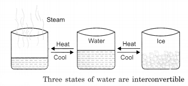 Water Class 6 Notes Science Chapter 14 1