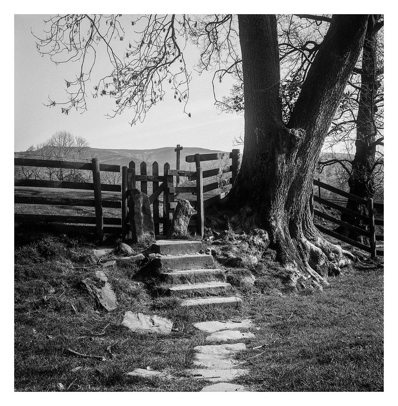 FILM - A path near Edale