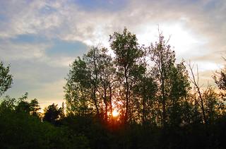 Sunset (16 July 2013) (Larchwood, Ontario, Canada)