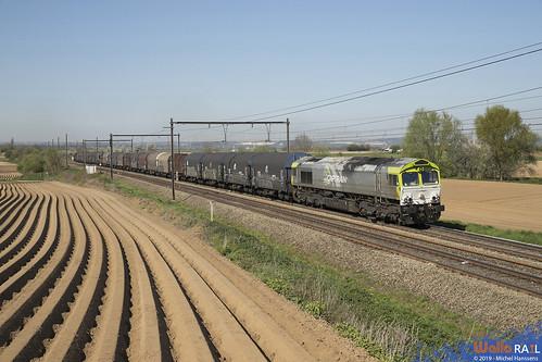 6603 . RTX . Z 42565 . Warsage . 19.04.19.