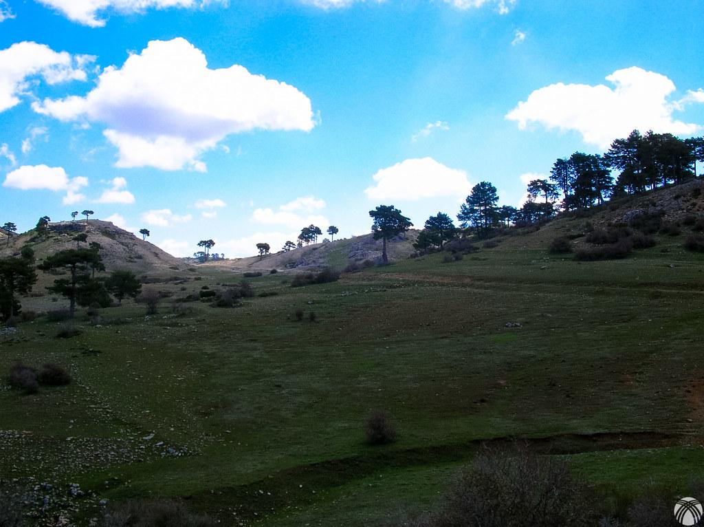 Más arriba de la Juan Fría cuando los laricios aparecen salpicando la montaña