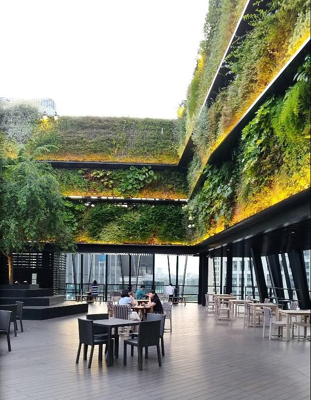 東急廣場採用綠牆作為屋頂咖啡廳的「裝潢」,相當吸引人