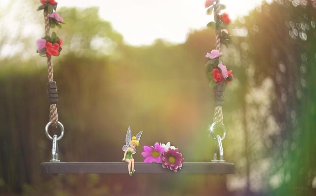 Fairy Swing...