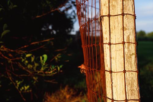 50mm velvia100 leica filmphotography film thedarkroom leicam6 summicronm50mmf2 analog broussardhome vacation2018 leicasummicron50mmf20v m6 leicam6ttl085 abbeville louisiana unitedstates