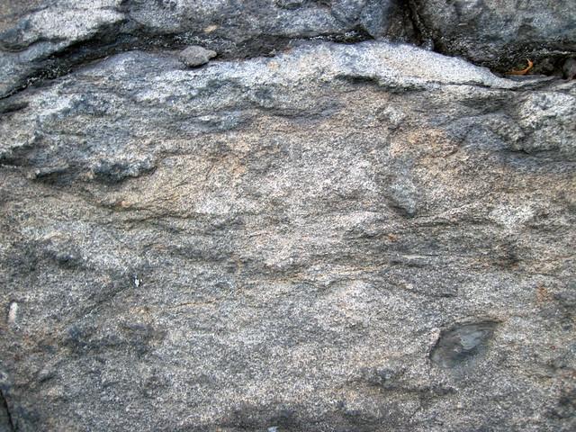 Metagraywackes (Chelmsford Formation, Paleoproterozoic, 1.74 Ga; Larchwood North outcrop, Sudbury Impact Structure, Ontario, Canada) 37