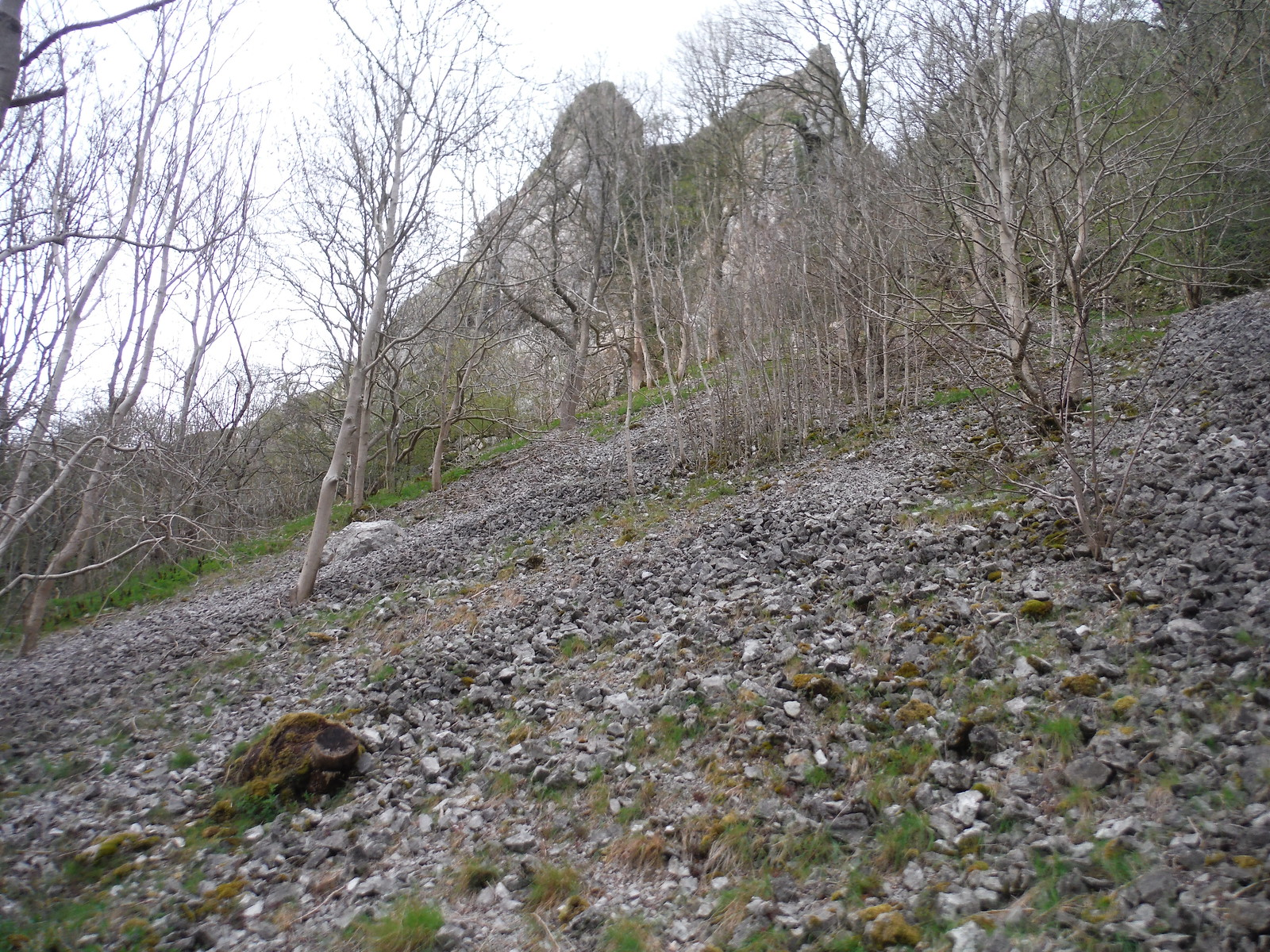 Limestone Crags and Slope, Upper Dovedale SWC Walk 326 - Dovedale (Ashbourne Circular) [Long Version via Alstonefield]