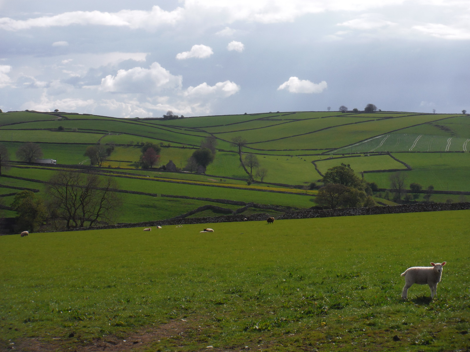 Southerly Views from near Alstonefield SWC Walk 326 - Dovedale (Ashbourne Circular) [Long Version via Alstonefield]