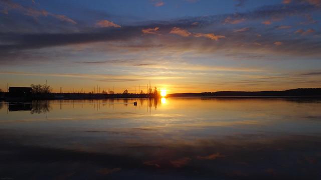 (5 of 5) Painted Morning Landscape (Swan Sunrise)