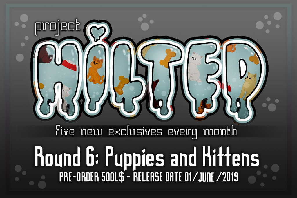 Project HILTED – Round 6 – Puppies and Kittens