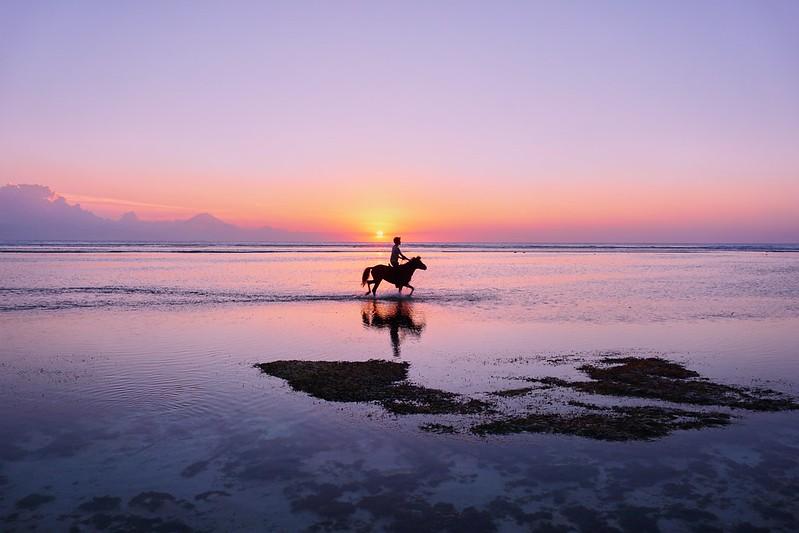 Best Gili Islands Accommodation