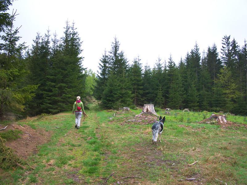 czeskie Góry Orlickie
