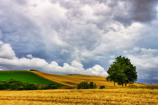 La campagna toscana: Santa Luce (6) - The Tuscan countryside: Santa Luce (6)