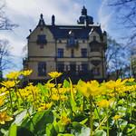 Villa Lusthusporten, Djurgården, May 7, 2018