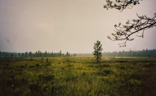 Ukk-vaellus 2003
