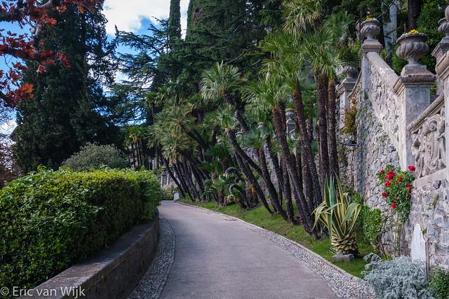 Villa Monastero Garden