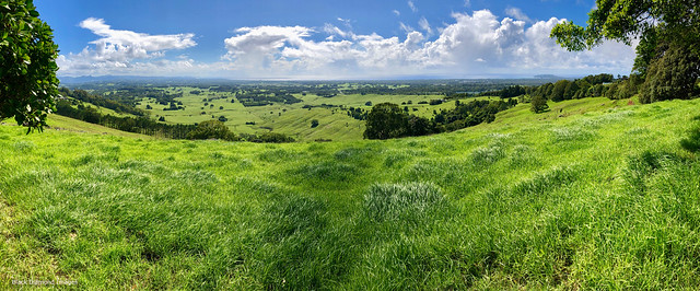 View over Ewingsdale and Byron Bay from the Coolamon Scenic Way Lookout, McLeods Shoot, NSW