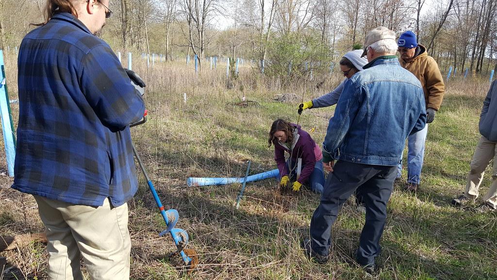 Community Tree Planting Day