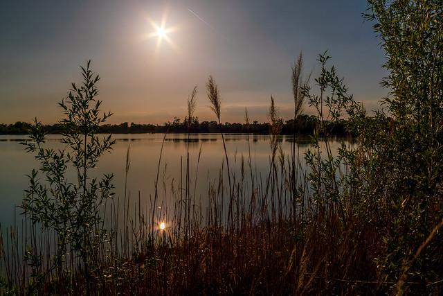 Lake impressions | SONY ⍺7RII & vintage manual Canon FD 28mm ƒ3.5 S.C.