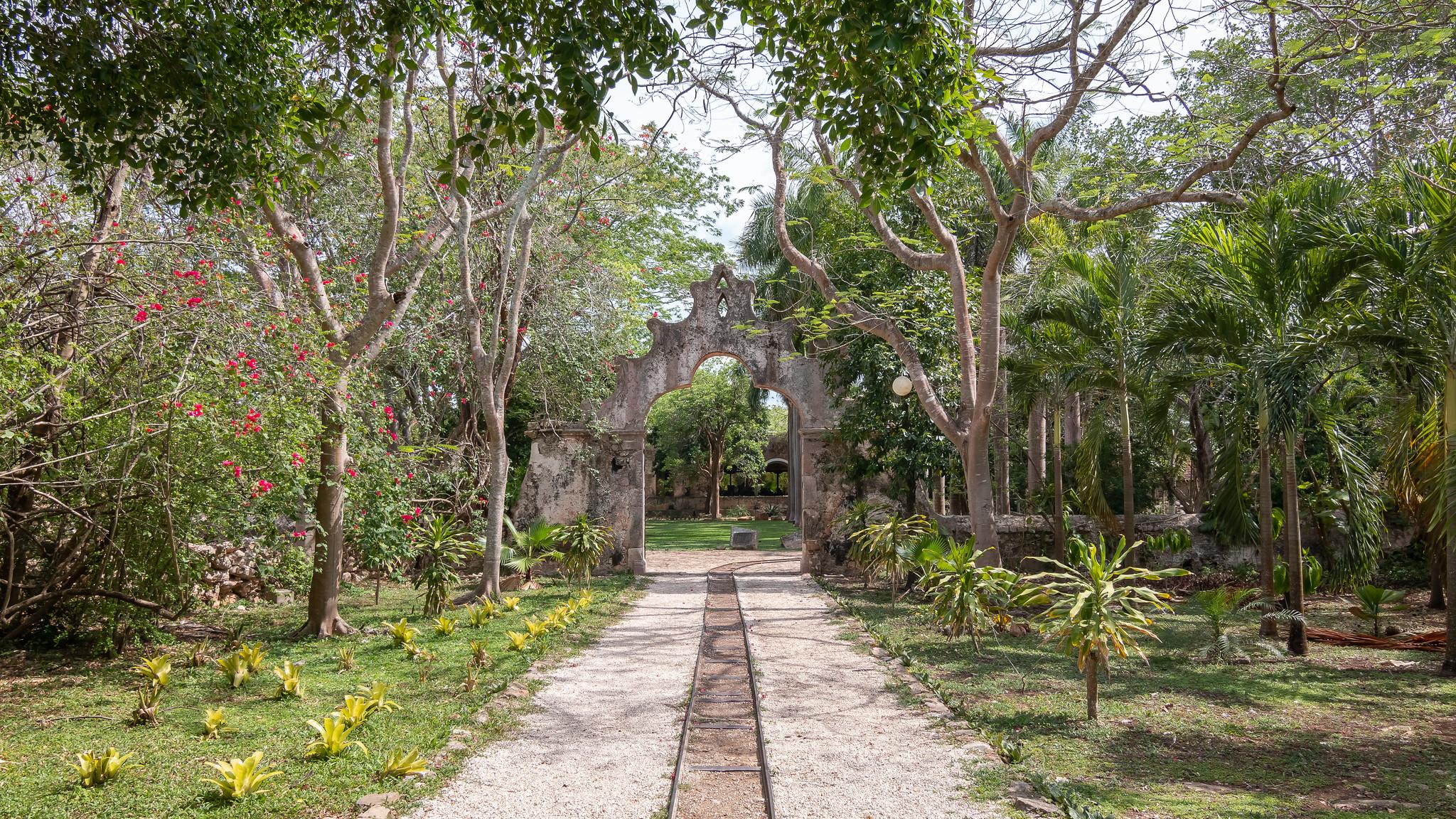 Abala - Yucatan - [Mexique]