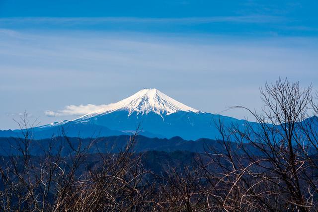 御前山直前の富士山展望ポイント