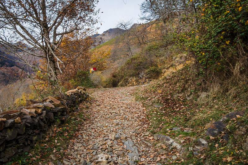 Cruce de senderos en las afueras de Bausen