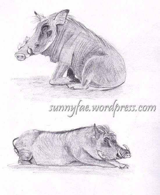 warthogs pencil drawing