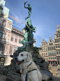 Fulbrighting with Fido | by Fulbright Brussels