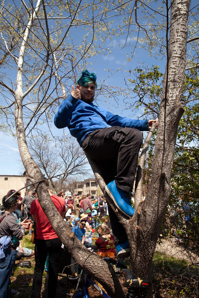 My son, up a tree, watching the May Day Parade 2019