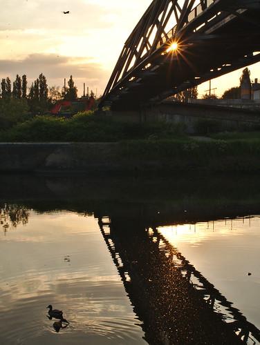30mm animals architecture belgium birds bridge camera canal charleroi duck gx7 hainaut landscape lens lumix places primes sunset water