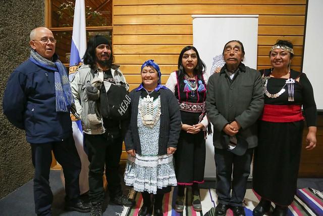 VI encuentro de Poetas Mapuches - Conmemoración Día Internacional del Libro.