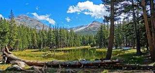 Wetlands Meadow, Yosemite High Country 2017