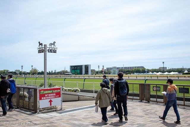 20190428 東京競馬場 / Tokyo R.C.