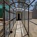 Cage or corridor