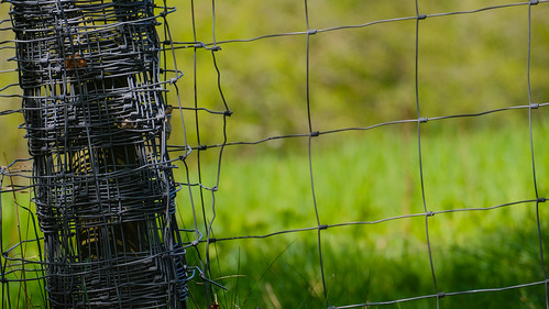 Fence Wire Beside The Path | by Stuart Herbert