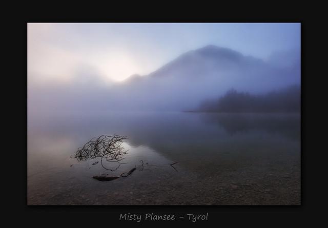 Misty Plansee