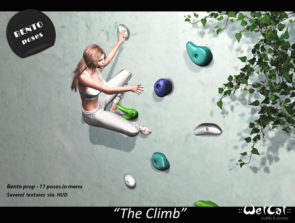 """::WetCat:: """"The Climb"""" Bento Prop"""