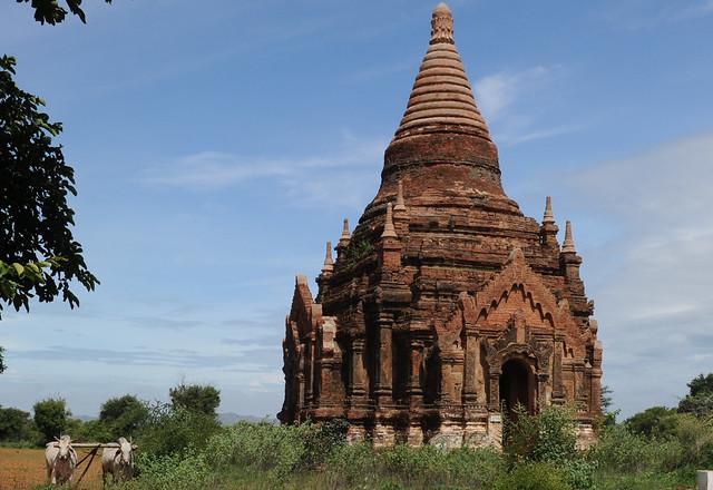 Bagan, Myanmar (Birmania) D700 1618