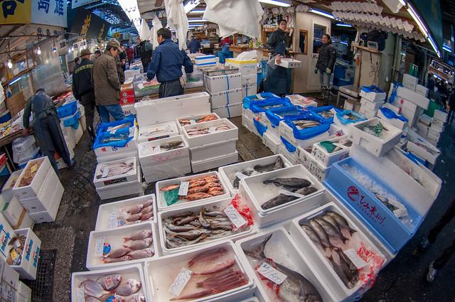 Tsukiji Fish Market, Tokyo, Japan 2011