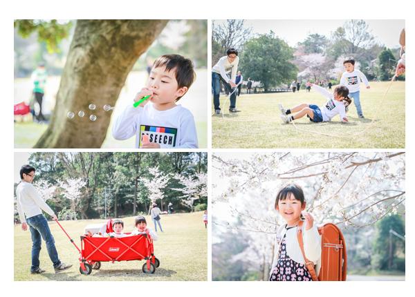 小学校入学記念の家族写真 4月はじめ 桜の季節 森林公園(愛知県尾張旭市)
