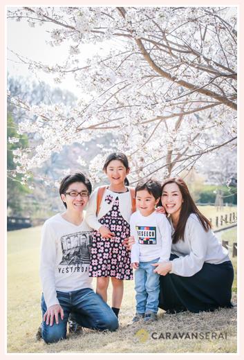 桜の咲く公園で家族写真 森林公園(愛知県尾張旭市)