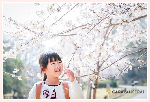 新小学1年生の女の子 ランドセル背負って桜の木の下で